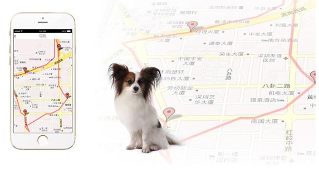 《【摩登4娱乐app登录】你家主子都去哪了?芯讯通Cat.1模组告诉你》